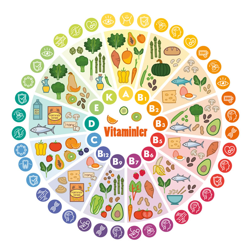 Vitamin ve Mineraller | GTBD